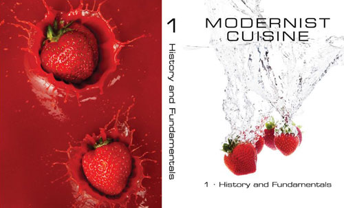 modernist-cuisine-design-madness